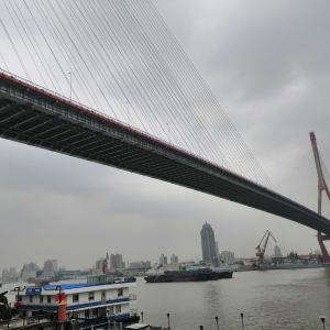杨浦大桥旅游景点攻略图