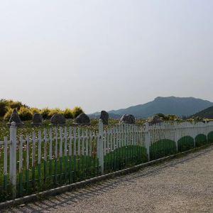 七孔桥花海旅游景点攻略图