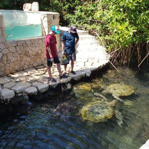 帕克尼卓水上乐园旅游景点攻略图