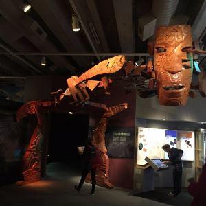 新西兰蒂帕帕国家博物馆旅游景点攻略图