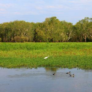 黄水河旅游景点攻略图