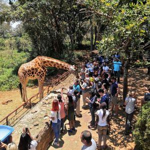 长颈鹿中心旅游景点攻略图