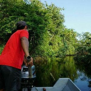 Kawa红树林旅游景点攻略图