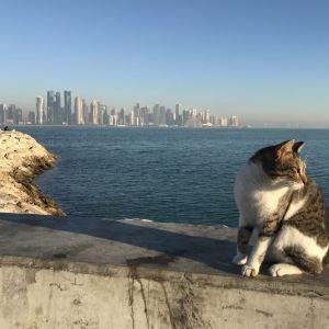 卡塔尔明珠旅游景点攻略图