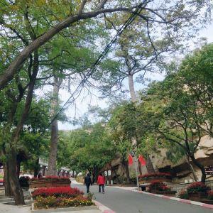 青岩寺风景区旅游景点攻略图