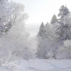 老里克湖旅游景点攻略图