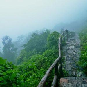 王母山旅游景点攻略图