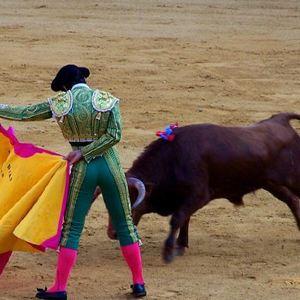 瓦伦西亚斗牛场旅游景点攻略图