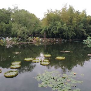 古猗园旅游景点攻略图