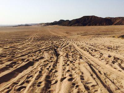 Explore Sahara Tours