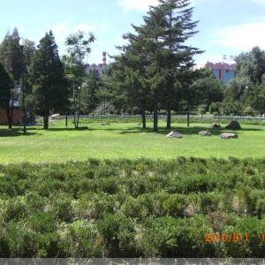 青年公园旅游景点攻略图
