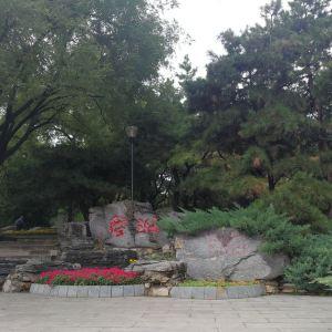 玲珑公园旅游景点攻略图