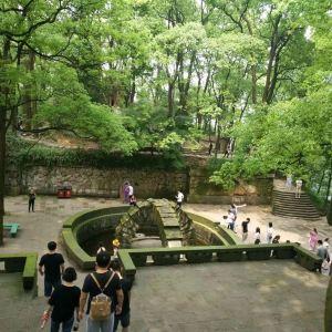 歌乐山国家森林公园旅游景点攻略图