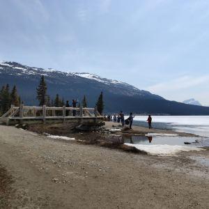 弓湖旅游景点攻略图