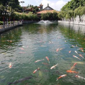 广州南粤苑旅游景点攻略图