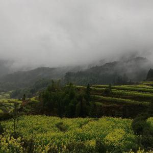 江岭景区旅游景点攻略图