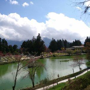 清境小瑞士花园旅游景点攻略图