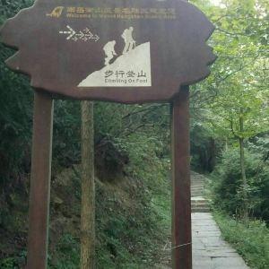 穿岩诗林旅游景点攻略图