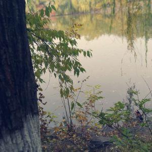 未名湖旅游景点攻略图