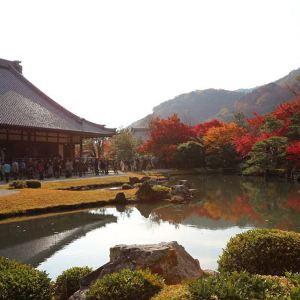 天龙寺旅游景点攻略图