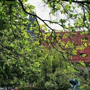 布拉格犹太博物馆旅游景点攻略图