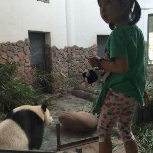 熊猫谷旅游景点攻略图
