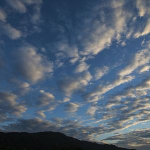 九龙湖生态公园旅游景点攻略图