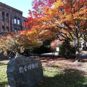 北海道大学综合博物馆旅游景点攻略图