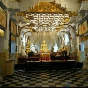 世界佛教博物馆旅游景点攻略图