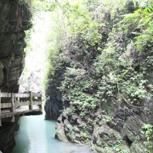 燕子岩国家森林公园旅游景点攻略图