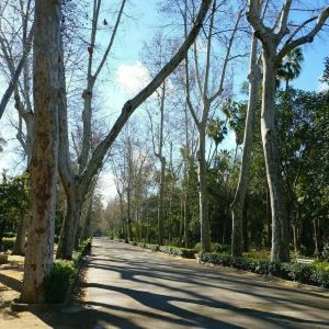 玛丽亚·路易莎公园旅游景点攻略图