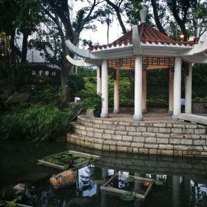 香港中文大学旅游景点攻略图