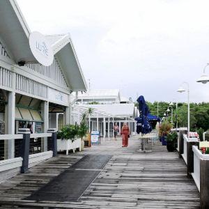道格拉斯港旅游景点攻略图