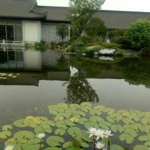 西湖国宾馆紫薇厅旅游景点攻略图