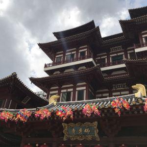 新加坡佛牙寺龙华院旅游景点攻略图