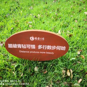 晓园公园旅游景点攻略图
