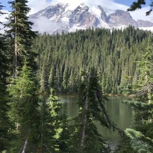 雷尼尔山国家公园旅游景点攻略图