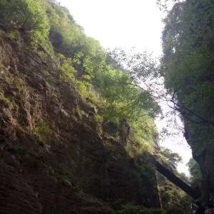丹分沟旅游景点攻略图