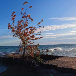 多伦多群岛旅游景点攻略图