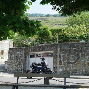 拉沃葡萄园梯田旅游景点攻略图