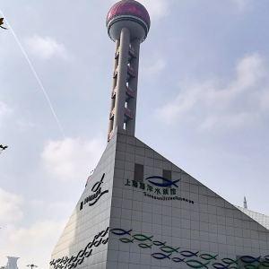 上海海洋水族馆旅游景点攻略图