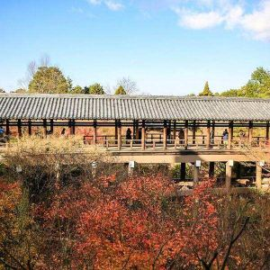 东福寺旅游景点攻略图