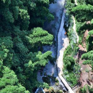 川西竹海景区旅游景点攻略图