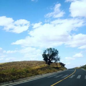 河谷草原旅游景点攻略图