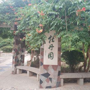 泉城公园旅游景点攻略图