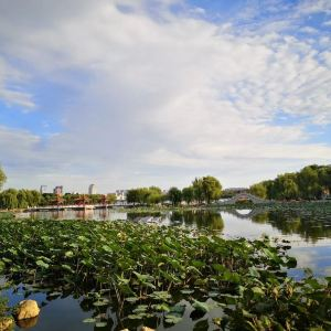 南湖公园旅游景点攻略图