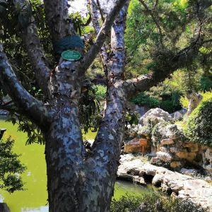 江南园林旅游景点攻略图