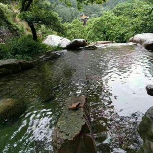 崂山绿石博物馆旅游景点攻略图