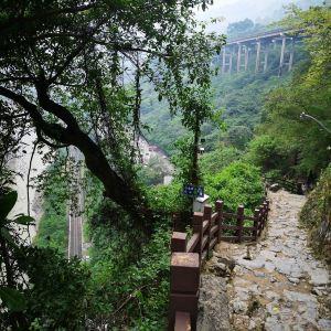 五尺道风景区旅游景点攻略图