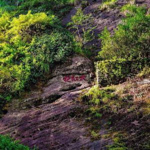 大红袍景区旅游景点攻略图